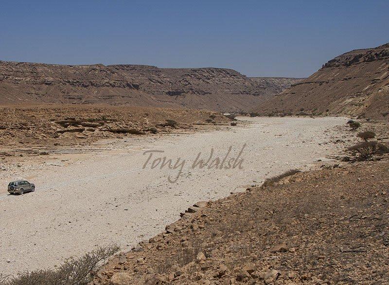 Wadi Crawl