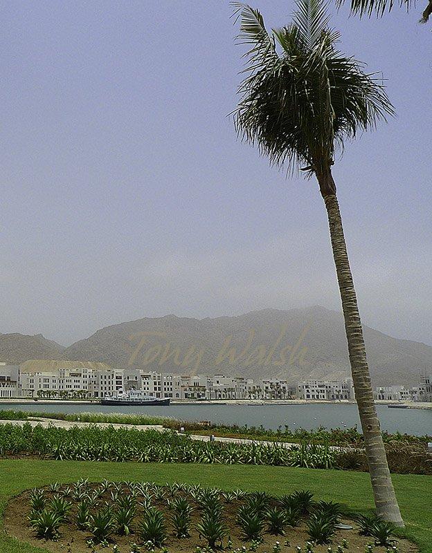 Sifawy Marina