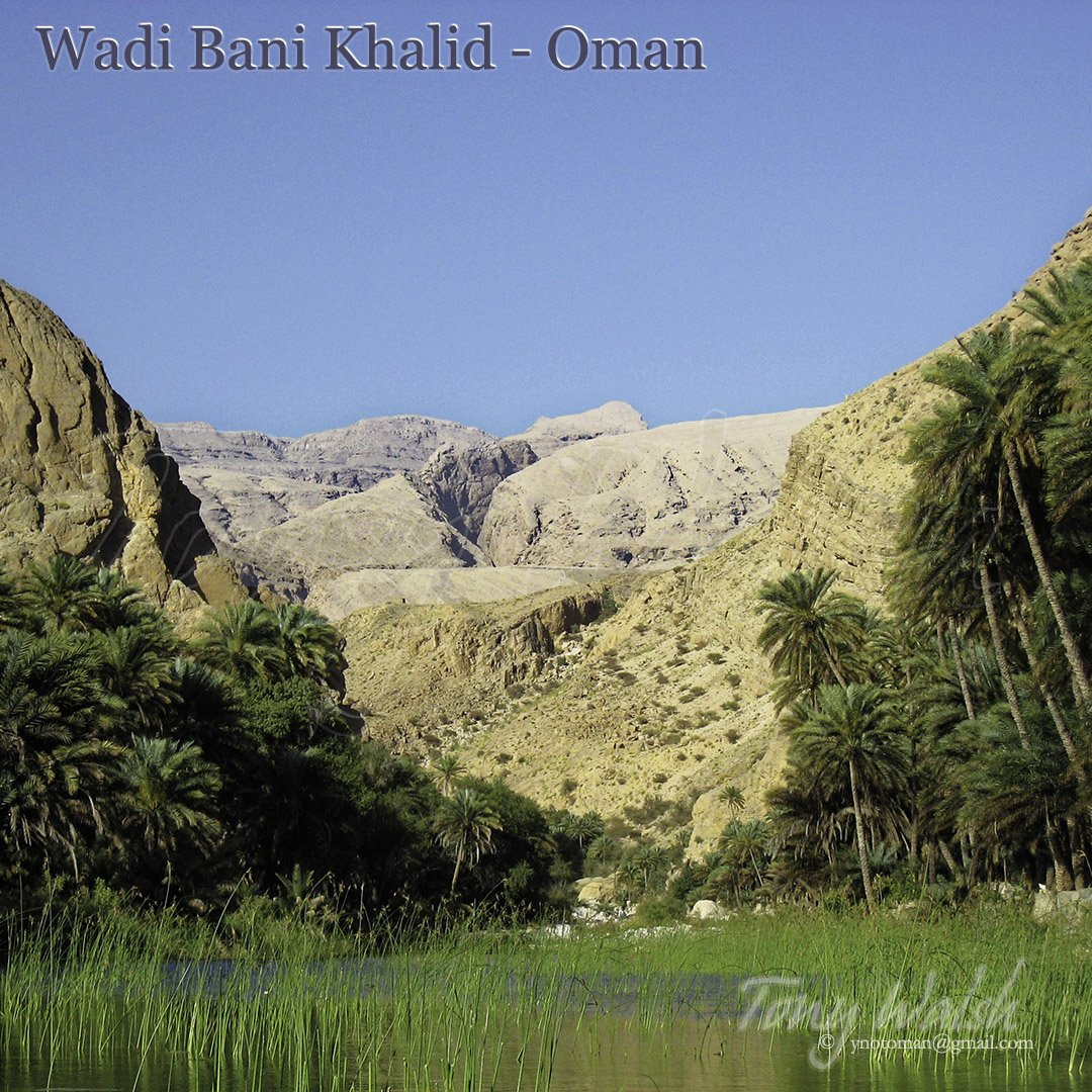Wadi Bani Khalid Pools