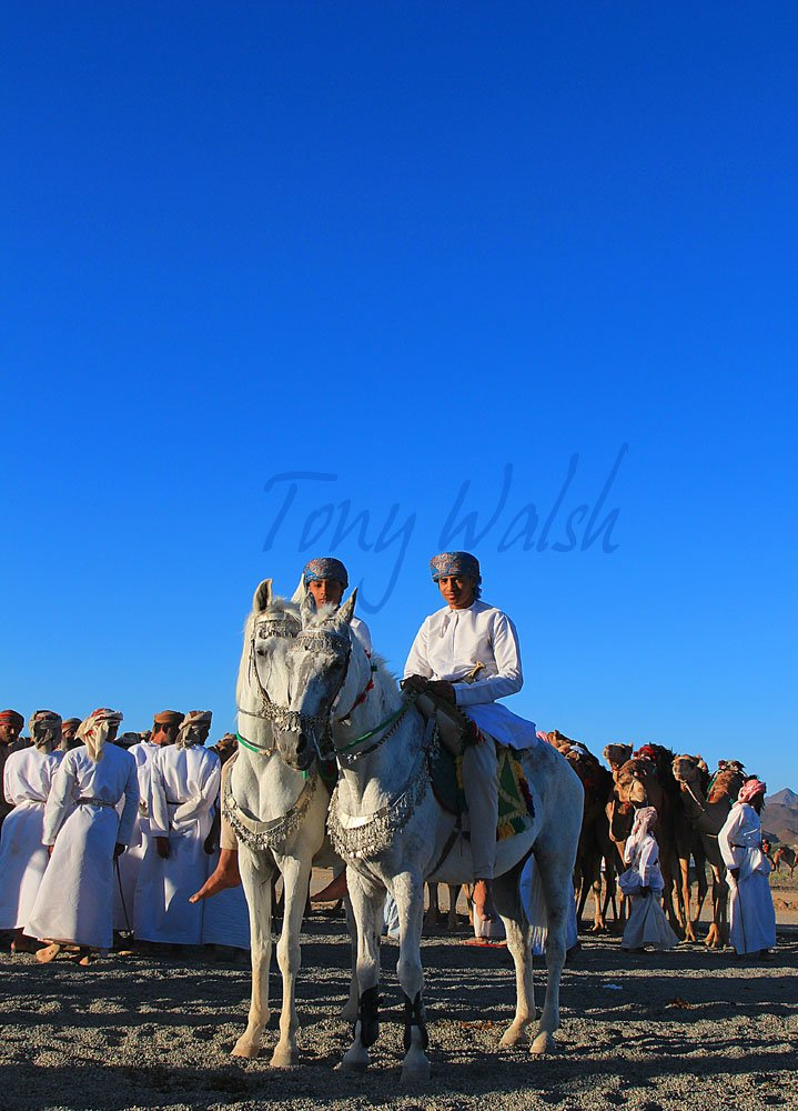 Horse Event in Oman