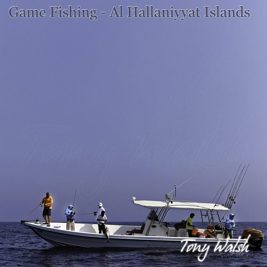Game Fishing - Al Hallaniyyat Islands